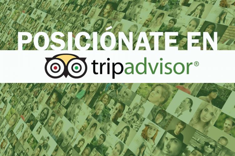 Descubre cómo posicionar tu negocio en TripAdvisor