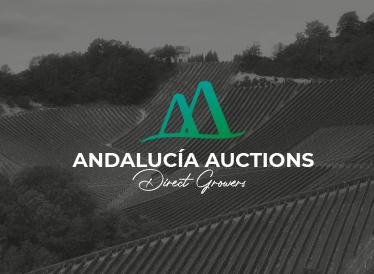 Andalucía Auctions